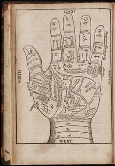 17th century palm-reading chart   The Museum of Ridiculously Interesting Things