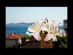 Slayt Gösterim One Istanbul Suadiye Otel
