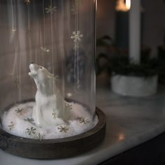 Mr. Eisbär im Schnee.