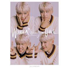 Wanna One Park Woojin K Pop, Jaehwan Wanna One, Ong Seung Woo, Young Park, Polaroid Photos, My Big Love, My Destiny, Kim Jaehwan, Ha Sungwoon