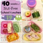 Week 19: 40 Weeks of Nut Free School Lunches