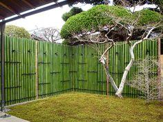 Bamboo Wall, Bamboo Fence, Landscaping Retaining Walls, Backyard Landscaping, Cabana, Bamboo House Design, Bamboo Building, Jungle Art, Bamboo Architecture