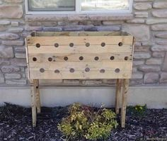 She Drills 19 Holes Into This Wooden Planter Box Watch What Happens 5 Months Later INCREDIBLE