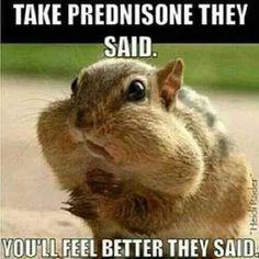 prednisone    Multiple Sclerosis