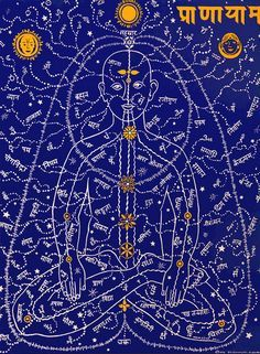 """Together with the chakras, the nadis - variously translated as """"conduits"""", """"nerves"""", """"veins"""", """"vessels"""" or """"arteries"""" - constitute the composition of the subtle or yogic body in Tantra. Like the Chinese meridians, the nadis constitute channels of flow of subtle vital force (prana)"""