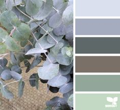 Color palette { nature tones } #19