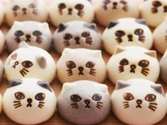 【NEWS】猫の形のスウィーツまん「ニャムチャ」が『フェリシモ猫部』からデビュー!