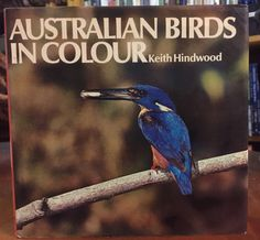 Australian Birds in Colour by Keith Hindwood. First published in 1966. Eleven accomplished photographers have contributed outstanding examples of their skill to this book. Keith Hindwood writes about the birds illustrated and about Australian bird-life in general. The resulting combination of excellent pictures and informative text forms a colourful and attractive volume.