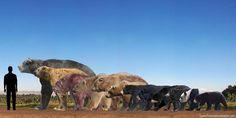 Alguns Ursidae em escala  Da esquerda para a direita:  Arctotherium augustidens (extinto) - Pleistoceno da América do Sul Arctodus simus (extinto) - Pleistoceno da América do Norte Ursus spelaeus (extinto) - Pleistoceno da Europa urso-polar urso-de-kodiak urso-pardo urso-negro urso-negro-asiático urso-de-óculos urso-beiçudo panda-gigante urso-malaio.