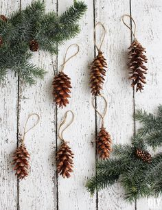 Oh so easy Homemade Christmas Ornaments. Pine cone ornaments are as easy as 1 2 3! thediydreamer.com