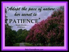 ralph waldo emerson quotes to be yourself - Google Search