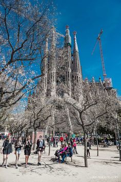 Basílica i Temple Expiatori de la Sagrada Família - Was kostet der Aufstieg auf…