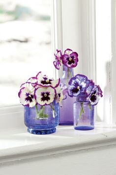 Winter days have you feeling gloomy? Bring happiness inside with just a few snips. Pair vintage purple bottles with these 'Violet Picotee' panolas. (What's a panola? A pansy crossed with a viola.) You'll love the fragrance!