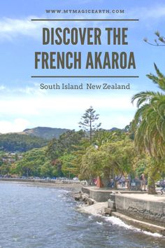 Things to do in the French village Akaroa are exploring the French culture, hiking, taking a nature cruise, kayaking, and enjoying the hilltop harbour view. #newzealand #oceania #coast #destination #adventure #adventuretime #traveltips #travelblog #travellife #daytrips #新西兰 #traveltips #travelblogger #weekendtrip #roadtrip #thingstodo #familywithkids #familytravel #southisland #akaroa #frenchvillage Australia Destinations, Top Travel Destinations, Australia Travel, Travel Tips, Travel Advise, Travel Abroad, New Zealand Attractions, New Zealand Itinerary, New Zealand Travel Guide
