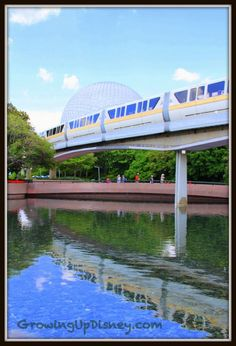 I can never get enough of the monorail ... Growing Up Disney: Photo Flashback! Monorail Reflections