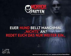 Redet euch das nur ein… #horrorfakten
