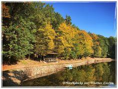 #nature #forest #pond #autumn #vylet #cestovani #adventure #explore #landscape #travel #trip #turista #retroturistika #czechia #visitCzechia #cesko #2017