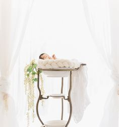 Composite Newborn Photography │Props and Florals in Toronto by Marissa Martine│