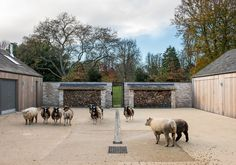 Mclean Quinlan Stables in Buckinghamshire, UK Architects London, Best Barns, Modern Barn, Modern Farmhouse, Country Estate, Maine House, Sustainable Design, Stables, Winchester