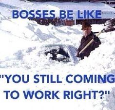 bosses be like funny memes work meme lol funny quote funny quotes humor bosses Chef Humor, Boss Humor, Nurse Humor, Teacher Humor, Work Memes, Work Quotes, Work Funnies, Work Humour, Friday Funnies