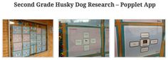 2nd Grade Husky Dog Research with Popplet app (used in Conjunction with a school-wide Iditarod unit): https://newsfrom2016finalists.wordpress.com/2015/03/22/theres-no-place-like-nome/