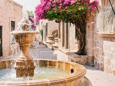 The resplendent fountains and flower-filled streets of Morelia Cheap Mexico Vacations, Romance, White Sand Beach, Mexico Travel, Latin America, Fountain, To Go, World, Outdoor Decor