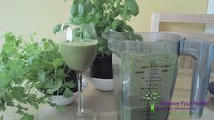 Smoothies are a great way to quickly and easily have a fabulously healthy breakfast