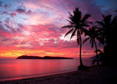 InterestPrint Seascape Wall Art Home Decor, Sunset with Birds Palms at Rebak Island Langkawi Malay Tapestry Wall Hanging Art Sets 80 X 60 Inches Jamaica, Nature Architecture, Beach Pink, Destinations, Videos Tumblr, Tropical Beaches, Summer Sunset, Pink Sunset, Pink Sky