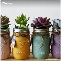 Succulents in mason jars...