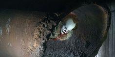 It: Uma Obra Prima do Medo: Finn Wolfhard de Stranger Things aparece em nova imagem do filme