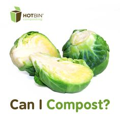 Day 10 HOTBIN Composting - Christmas Dinner and Controversial Sprouts | http://www.hotbincomposting.com/blog/composting-turkey-and-trimmings.html | #recycling #ZeroWaste #christmas