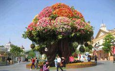 un arbol lleno de flores
