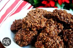 Gluten-Free Vegan Chocolate Peanut Butter No-Bake Oatmeal Cookies   The Healthy Family and Home