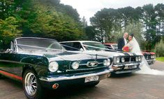 Mustangs in Black 1966 GT Convertible Ford Mustang out at Victoria's Sorrento for Dianna and Bud's wedding shoot - along with some classic limousines from GT Limo.