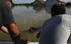 La Bosnie sous les eaux, un million de personnes touchées – metronews