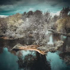 Riverbank in Limerick, Ireland (OC) [4000 x 4000] : EarthPorn