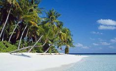 Maldives travel guide - Telegraph