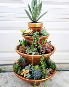 Succulent fountain Things to consider after a beautiful garden Grundprin . Succulents In Containers, Cacti And Succulents, Planting Succulents, Planting Flowers, Succulent Gardening, Succulent Terrarium, Container Gardening, Garden Fountains, Garden Pots