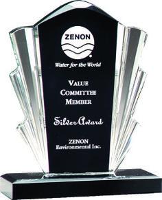 Black & Clear Flair Clear Acrylic Award Trophy