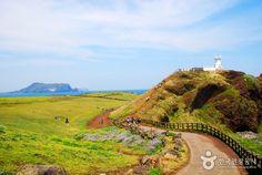 Jeju : Seopjikoji Hill - visited it on 24 March, 2014. So beautiful...beyond words!!!