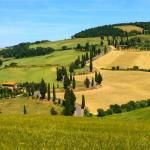 135 Things to Do in Siena, Italy