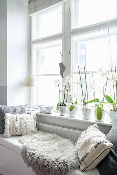 Decorating window sills: 39 style tricks and ideas - DAS HAUS The Effective Pictures We Offer You About DIY Rug with words A quality picture can tell you many things. You can find the most beautiful p Dining Room Windows, Bedroom Windows, Bedroom Loft, Window Sill Decor, White Lanterns, Storage Places, Plant Decor, Autocad, Home Furniture
