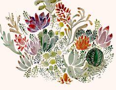 Succulents Art Print by Hannah Margaret Illustrations   Society6