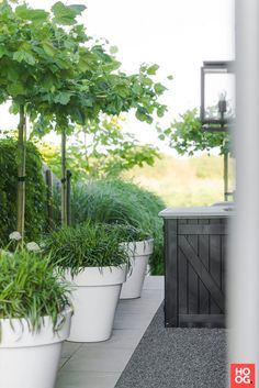 The garden pots and also balcony covered with several shades and greenery could make you relax and for a minute to forget daily concerns. You could select garden pots which is plentiful with greenery or vivid garden packed with several kinds color. Garden Deco, Garden Planters, Balcony Garden, Summer Garden, Home And Garden, Landscape Design, Garden Design, Balcony Design, White Gardens