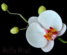 Pastillaje | Orquídeas