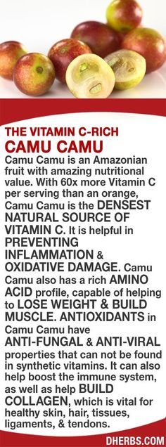 Camu Camu is an Amazonian fruit with high nutritional value. With 60x more Vitamin C per serving than an orange, it's the DENSEST NATURAL SOURCE OF VITAMIN C. It can help PREVENT INFLAMMATION & OXIDATIVE DAMAGE. It also has a rich AMINO ACID profile, helping to LOSE WEIGHT & BUILD MUSCLE. ANTIOXIDANTS have ANTI-FUNGAL & ANTI-VIRAL properties that can't be found in synthetic vitamins. It can help boost immunity, & help BUILD COLLAGEN, vital for healthy skin, hair, tissues, ligaments, & tendons.