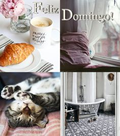 Buenos días y Feliz Domingo! #buenosdias #mañanas #cafe #relax #descanso #badebaño
