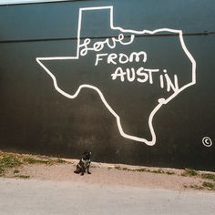 Dolly out exploring in our second location - Austin, Texas!