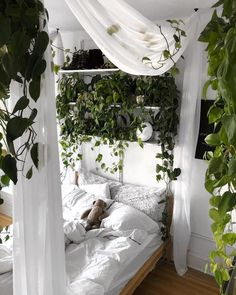 Trendy home decored bedroom plants Ideas Room Ideas Bedroom, Diy Bedroom Decor, Home Decor, Bedroom Plants Decor, Garden Bedroom, Bedroom Themes, Bedroom Inspo, Plant Decor, Room Ideias