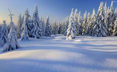 Peaceful winter day HD Wallpaper